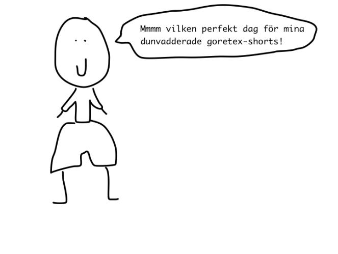 goretexshorts