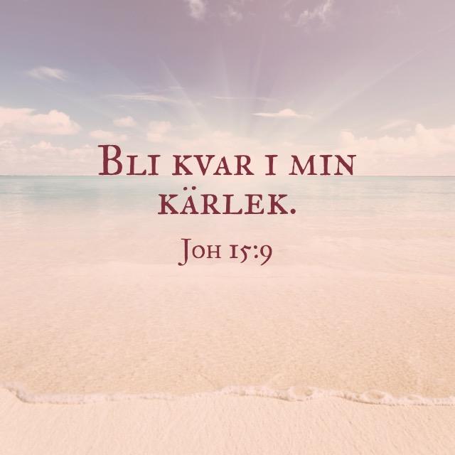 joh 15:9