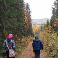 Tillbaka till Västerbotten